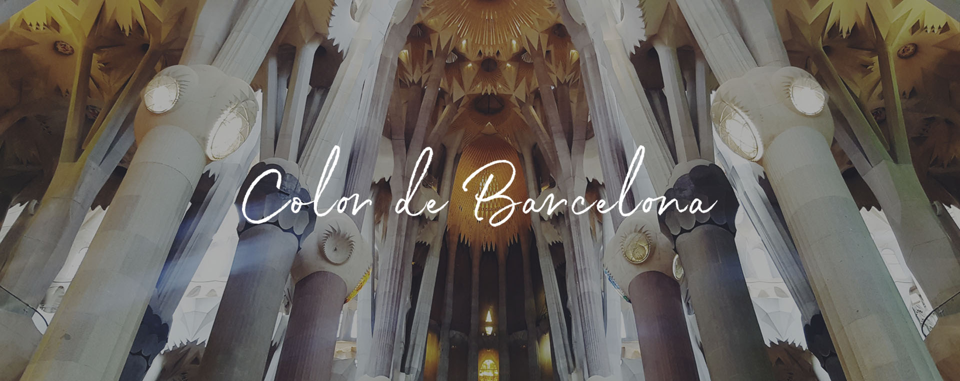 Roxa color de Barcelona
