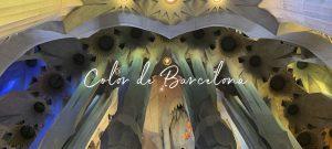 Roxa Barcelona edición limitada
